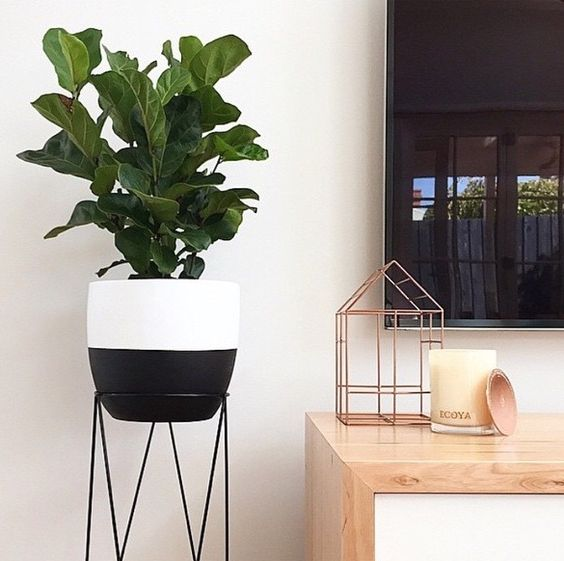 96 Best Images About Wpc Planter Pot: Kmart Styling Dipped Pot Plant And Plant Stand