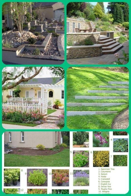 Large Front Garden Designs In 2020 Front Garden Design Garden Design Landscaping Rock