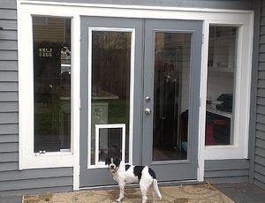 Pet Door In The Glass Doggie Door Inserts For Entry Doors Doggie Door Doors Entry Glass Inserts Dog Door Pet Door Dog Room Decor