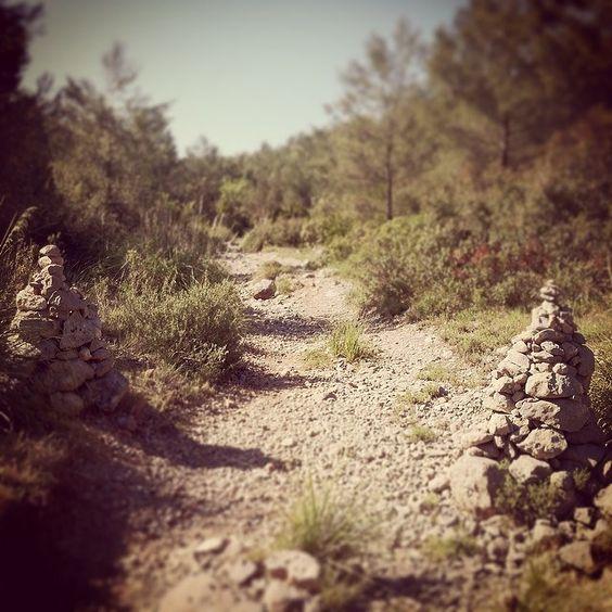 Columnes al camí #OlesadeBonesvalls #Penedes