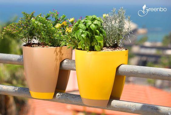Kreatív növénytartók a lakásban | ClassHome