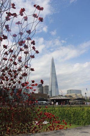 #Tower Of London  #London  #Najas Arquitectos