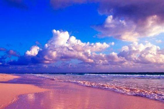Pink Beach Santa Cruz Island