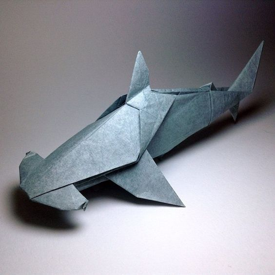 Hammerhead Sharks - Research Paper Example