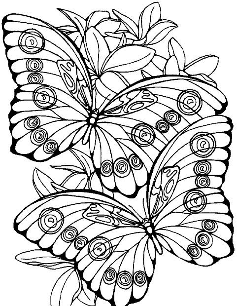 Omi Sengupta I Will Draw Beautiful Coloring Book Page For Kids For 5 On Fiverr Com In 2021 Abstract Coloring Pages Detailed Coloring Pages Butterfly Coloring Page