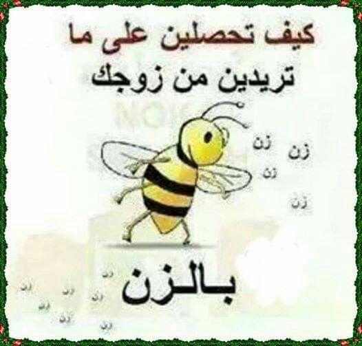 زن زن زن زن Humor Jokes Arabic Words