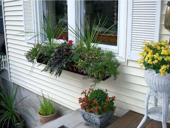 bac à fleurs, graminées d'ornement, pots de fleurs et parement bois blanc neige