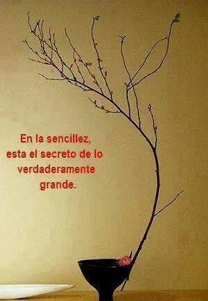 ===La humildad...=== A6c7b15445d2ad8c65cd801a30869a4c