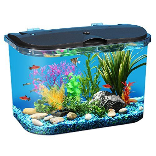 10 Best Aquarium Starter Kits In 2020 Aquarium Kit Betta Fish Tank Cool Fish Tanks