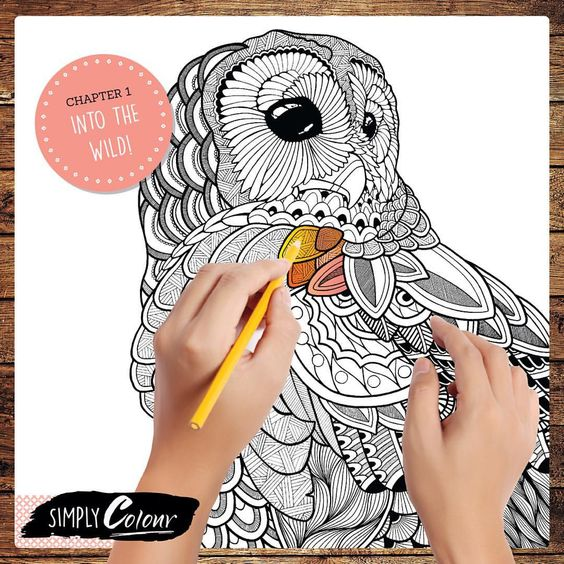 Chapter One: Escape INTO THE WILD with a selection of carefully curated and intricate animal drawings. #animals #colouring #adultcolouring #simplycolour