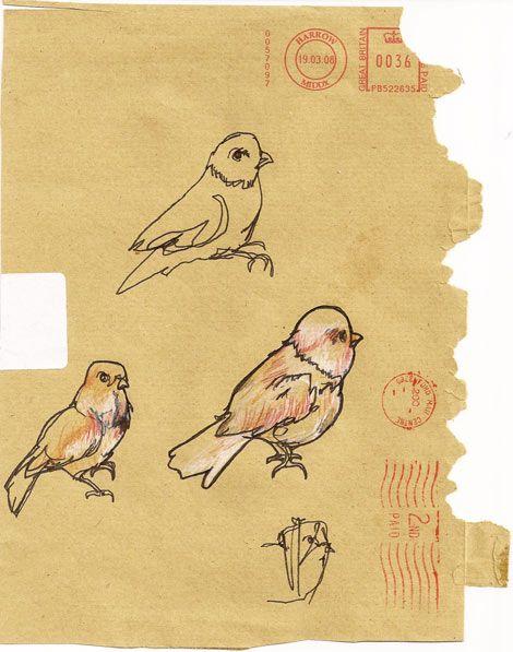 Contour Line Drawing Bird : Pinterest the world s catalog of ideas