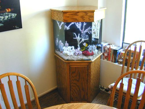 Fish tank and stand fish tank aquarium design marine for Octagon fish tank with stand