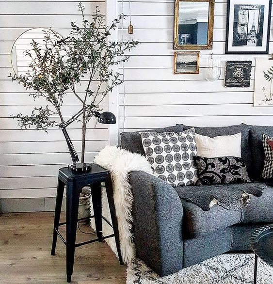 Olive Tree Decor How To Decorate With Trees