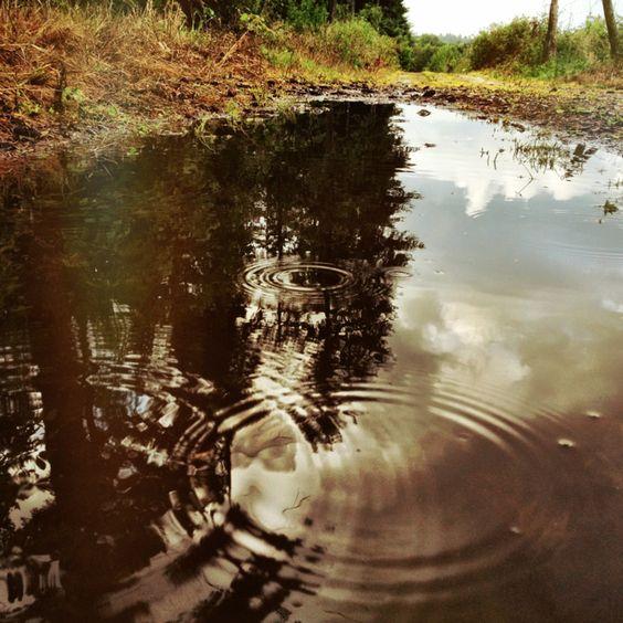 Rainy summertime Photographer: Nanna Lise Vester