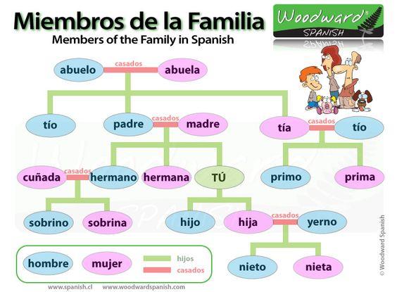 Miembros de la familia en español - Members of the Family in Spanish