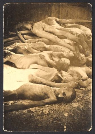 Dachau, Germany, Corpses, after the liberation. When I see these nameless bodies, I see the throngs of men and women, clothed and being hoarded into ghettos. Still, with clothing, smiles, and shreds of hope. Are these one of the many? I long to know names, trades, and aspirations. I want to know...I don't know why.