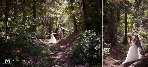 So This Is Love Pinterest Gardens Wedding Venues And Cas