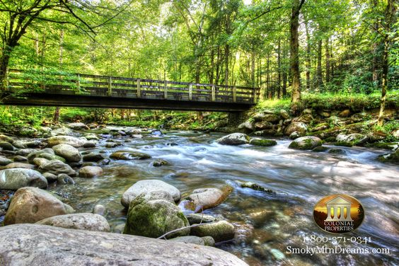 Greenbrier section of the Great Smoky Mountains National Park.