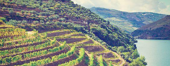 Refúgios para um fim de semana a dois inesquecível - Douro Vinhateiro
