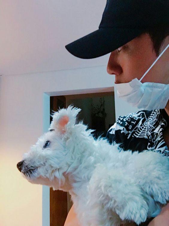 Jin and Jjangu ❤ [BTS Tweet] I love Seokjin and Jjangu's love-hate relationship! Haha #BTS #방탄소년단