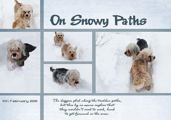 On Snowy Paths by Eijaite.deviantart.com on @DeviantArt