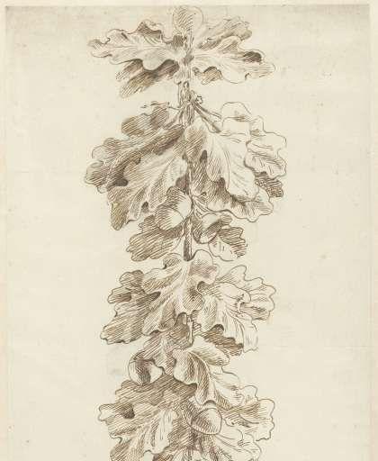 Festoen van eikenbladeren, Jacob Hagen (II), 1770 - Zoeken - Rijksmuseum