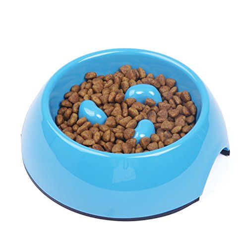 Dr Catsby S Whisker Relief Food Bowl Cat Food Bowl Food Bowl