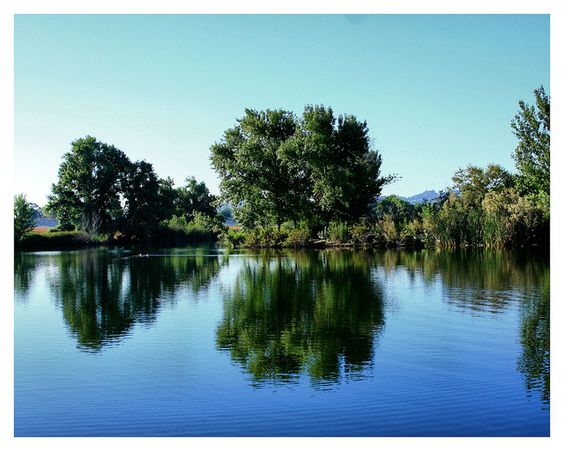 LAの少し北にあるウッドリー・パークで撮ったものです。自然がとてもきれいで、その近くにも日本庭園があります!