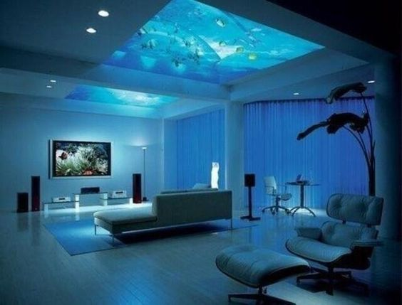 Aquarium ceiling!... Umm yes please