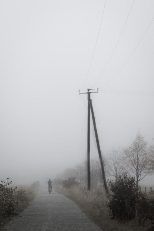 stephiramona:  It's a long way home.  Stephi's Fotos