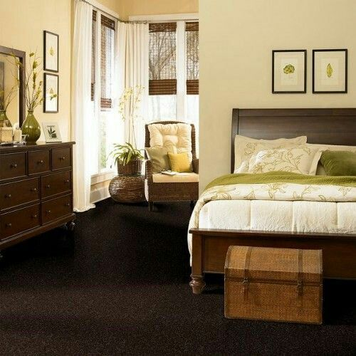 Dark brown carpet, light walls, earth tones