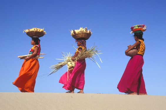 Mexico: Women from the Huave ethnic group carrying maize in baskets on their heads©FAO/R. Grisolia