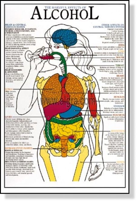 The effects of drugs and alcohol on the human body?