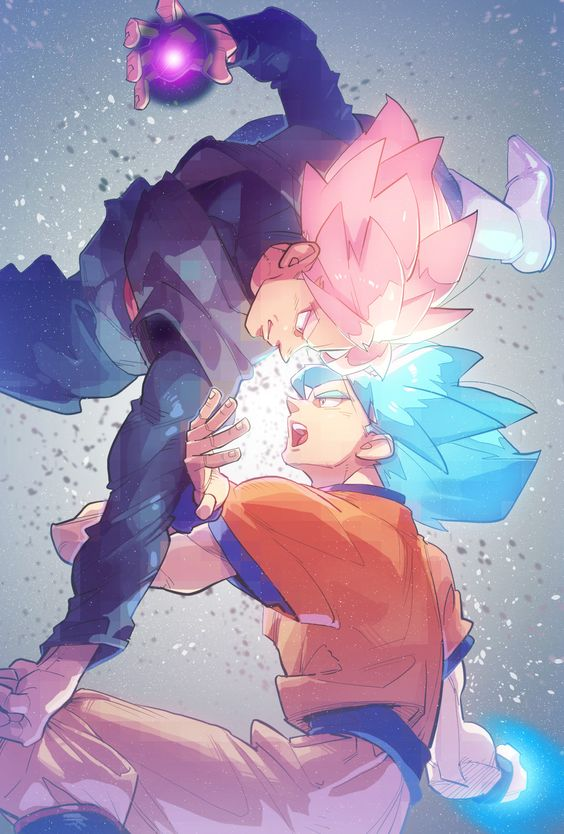 Goku vs Black Goku
