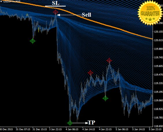 Supper Guppy Forex Trading System For Mt4 Forex Trading Forex