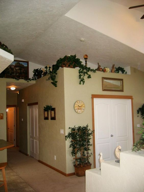 Plants For Kitchen To Decorate It: Shows Vaulted Ceilings In Living Area With Plant Shelves For Decorating