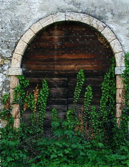 By Cinzia GK: Doors Stairs, Doors And Windows, Doors Windows, Amazing Doors, Beautiful Portals, Doors And Portals