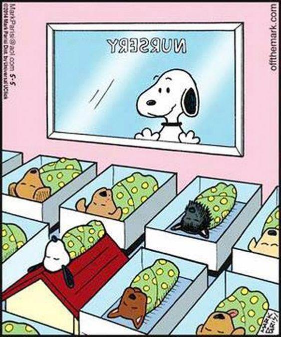 El hijo de Snoopy