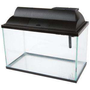 Top fin 5 5 gallon aquarium starter kit petsmart for 5 gallon fish tank petsmart