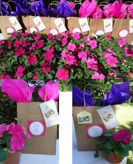 Souvenirs para bodas cumplea os y regalos empresariales plantas de flores con tarjetita de - Plantas pequenas para regalar boda ...