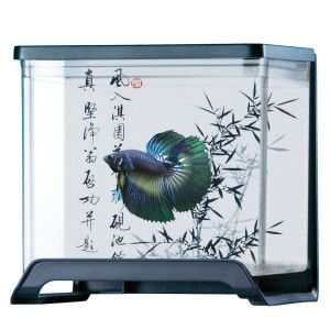 Use for low light plant display top fin betta tank for Betta fish tanks petsmart