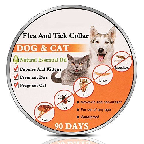 New Formulaflea And Tick Collar Flea Control Collar For Any Age Of Dog Cat25inches Adjustable Collar Cat Fleas Tick Repellent For Dogs Pregnant Dog