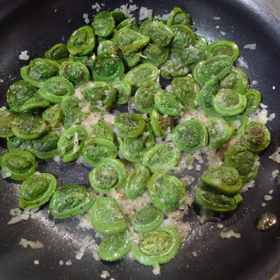 how to clean fiddlehead ferns