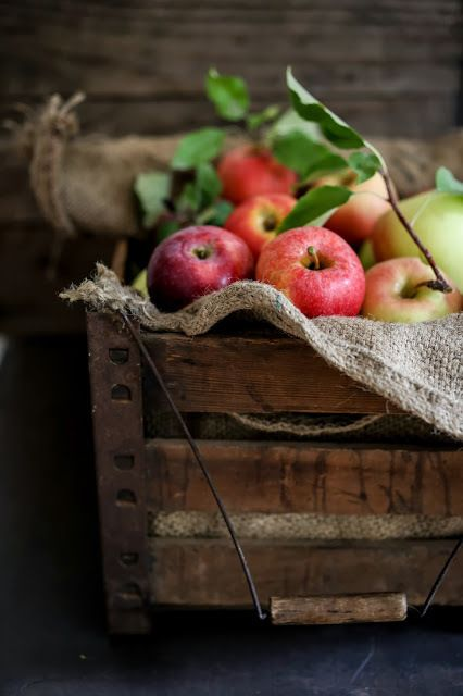We filled a wonderful hard wood basket with newly ripened apples .placed a twig of mist and left the fragrance fill the air. southing .