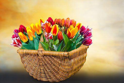 44 Imagens Legais De Buque De Flores Para Celular E Whatsapp