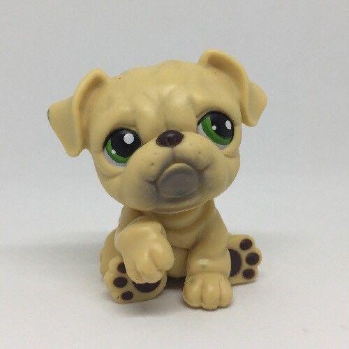 Littlest Pet Shop Tan Puppy Bulldog Bull Dog Green Eyes 107