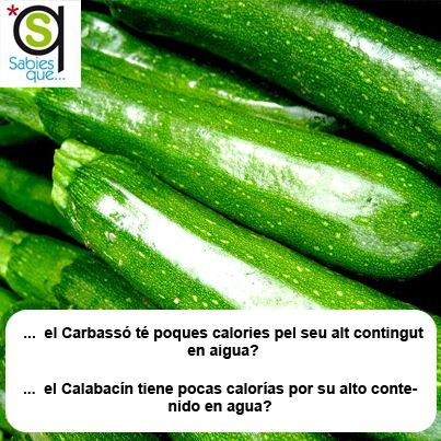 El #Calabacin tiene pocas #calorias por su alto contenido en #agua / El #carbasso té poques #calories pel seu alt contingut en #aigua