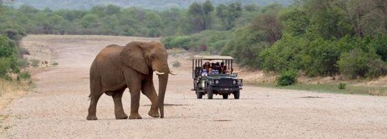 África do Sul  Lua de Mel Wilderness Safari | South Africa Honeymoon