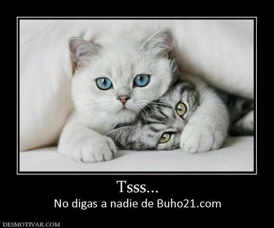 Tsss...+No+digas+a+nadie+de+Buho21.com