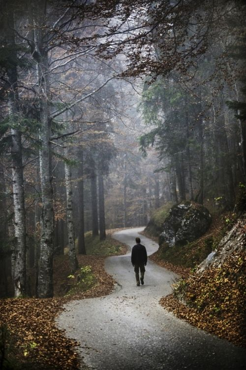 Image result for images for someone walking on a trail